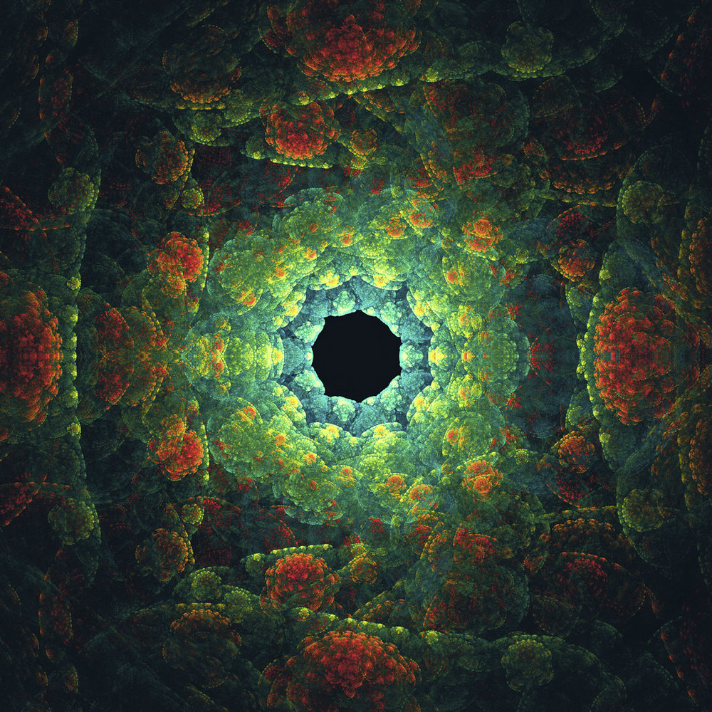 fractality___33____octopus_vagina__fav__by_the_french_monkey-d8sd6tk.jpg