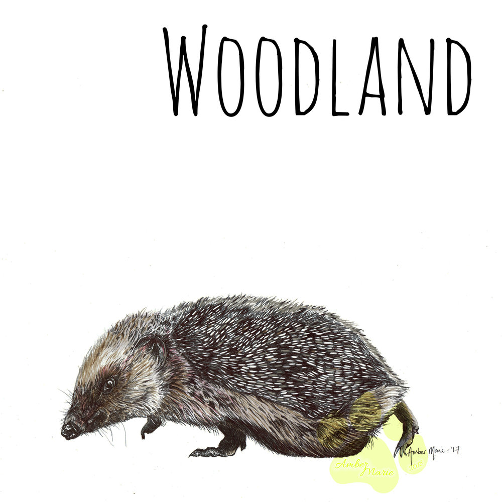 WOODLAND SHOP