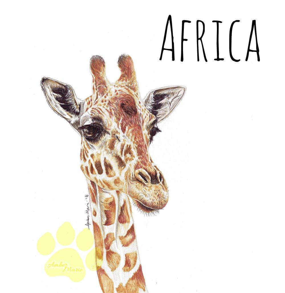 giraffe banner.jpg
