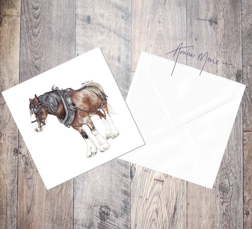 Clydesdale horse 6x6 greeting cards amber marie biro portraits clydesdale horse 6x6 greeting cards m4hsunfo