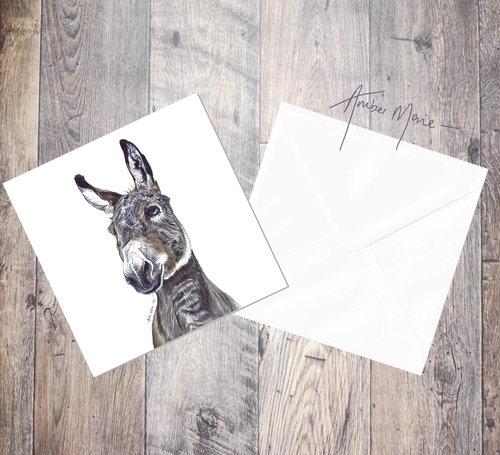 donkey 6x6 greeting cards amber marie biro portraits