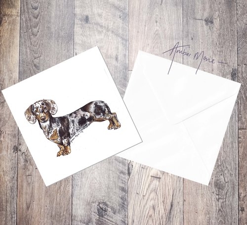 Dachshund greetings card chocolate dapple amber marie biro dachshund greetings card chocolate dapple m4hsunfo