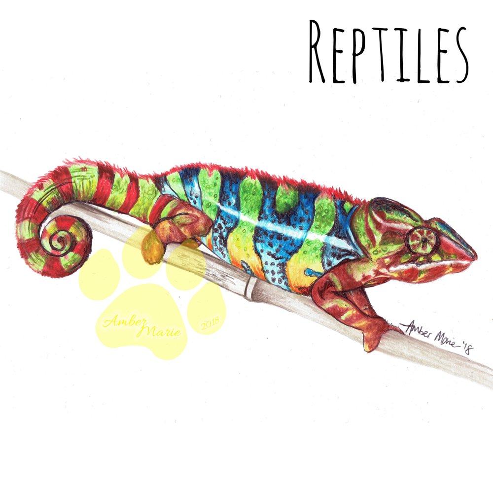 Chameleon wm cover.jpg