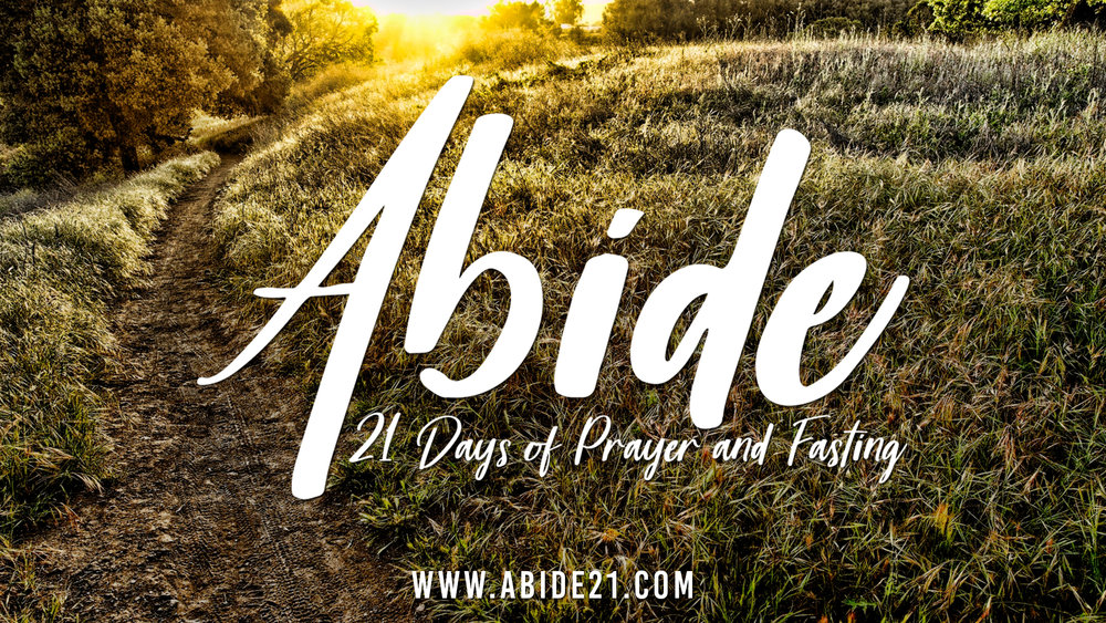 Current Series   Abide    Learn More