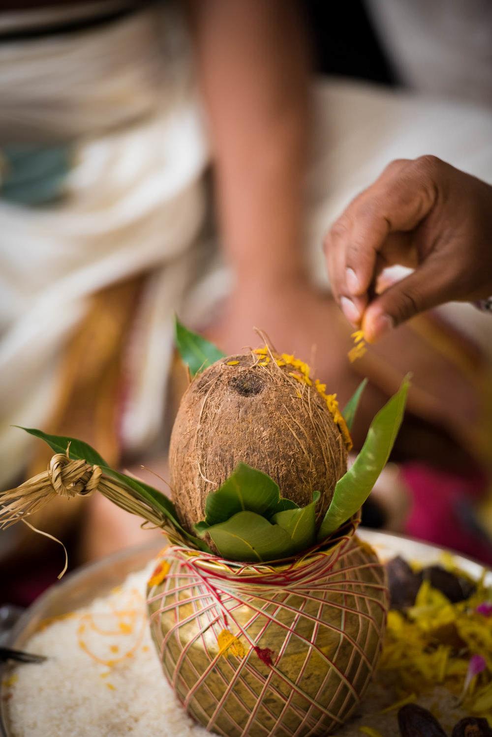 ecaterina-chandu-indian-wedding17.jpg
