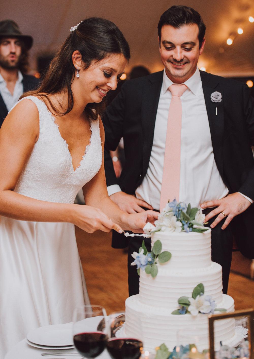 maureen_evan_wedding_cake_cutting_marthas_vineyard-0984.jpg