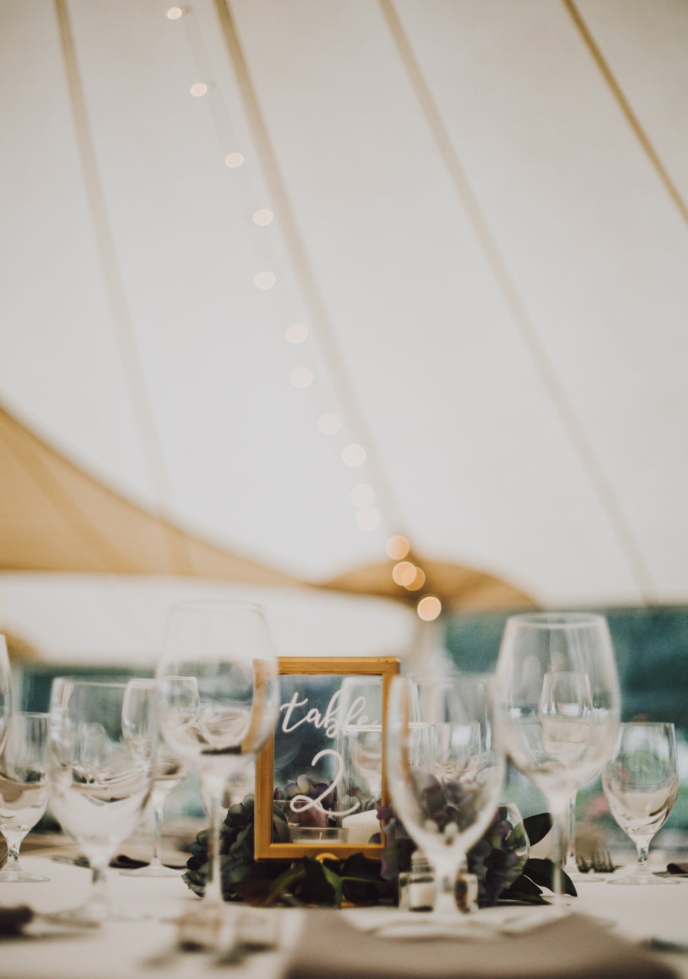 maureen_evan_wedding_marthas_vineyard-5403.jpg