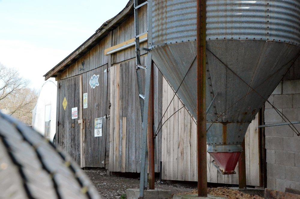 clydesdale farms 424.jpg