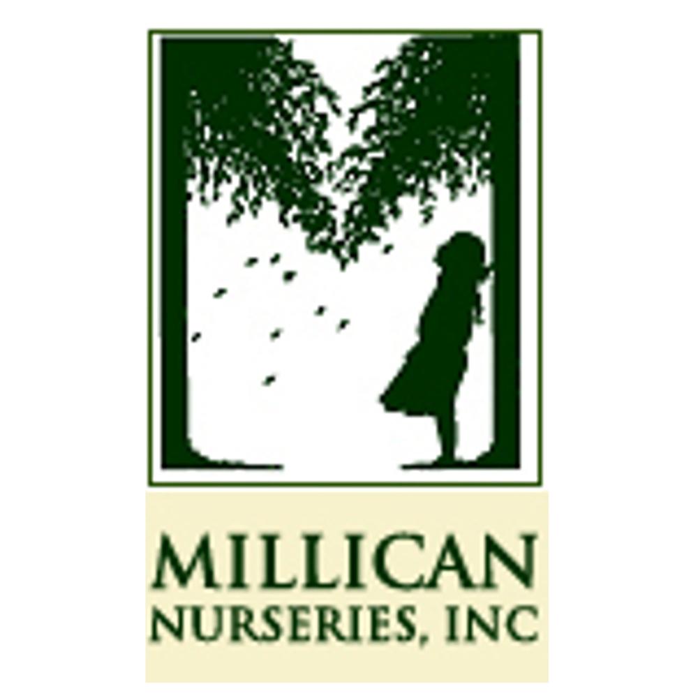 Millican Nurseries