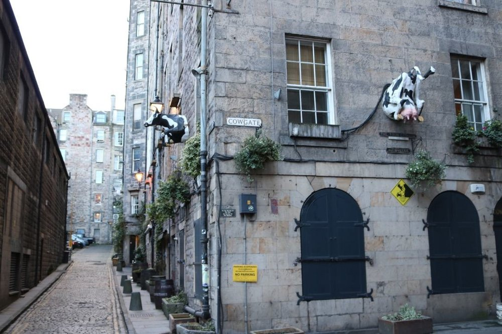 This cow became a favourite point of reconnaissance during my exploration of Edinburgh