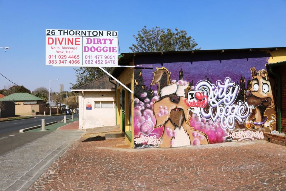 Shop owners also give graffiti artists permission to decorate their shop walls, like this dog grooming parlour on 26 Thornton Road