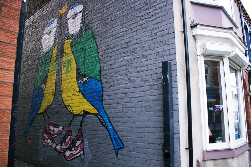 Middlesbourgh: A pair of urban birds covering an entire wall in Baker Street