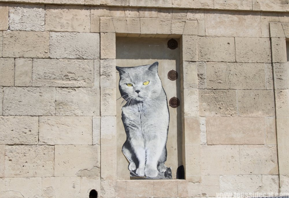 Street art in the Southern French town of Arles. No direct link to post. It's a cat. It looks funky.