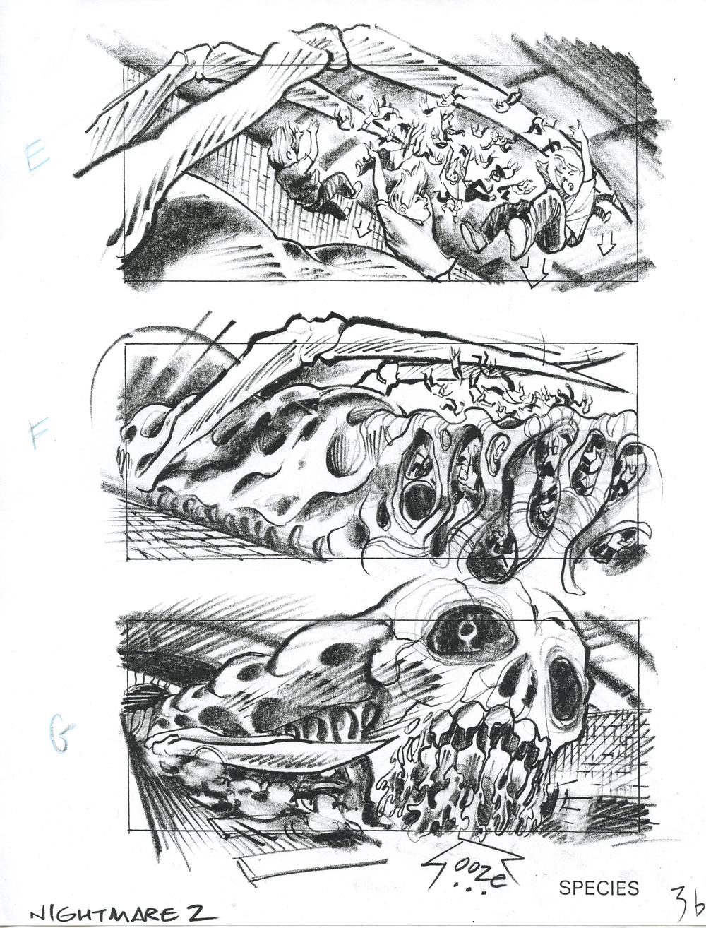 Species 1 (copy).jpg