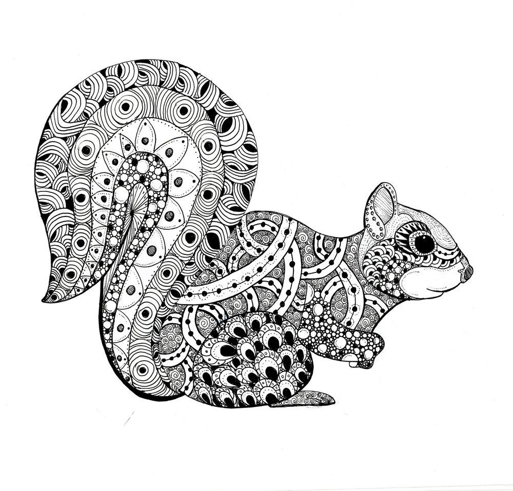 51147557_zen_squirrel_-_hand_drawn_illustration_by_heather_croxton.jpg