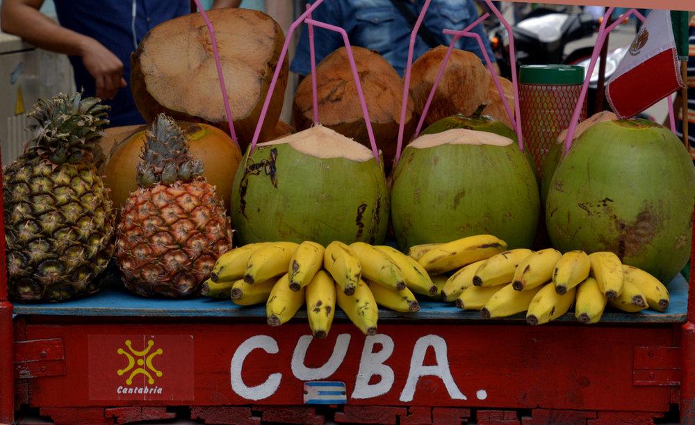 3-18-17 Havana, Cuba   buttonwoodDSC_0581 (306).jpg