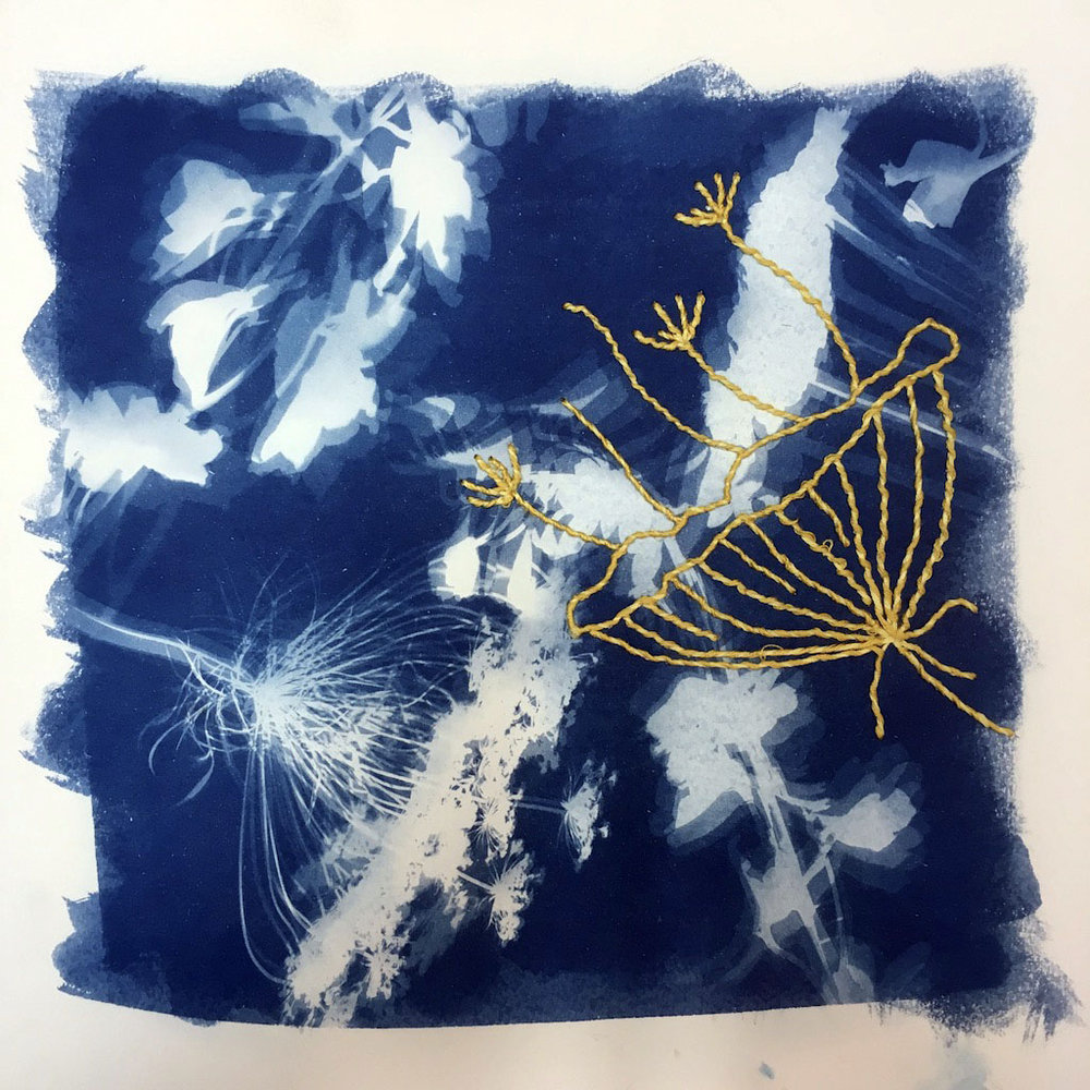 Murray_Lily_Cyano with embroidery.jpg