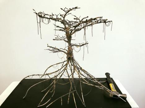 Alvarez Tree.jpg