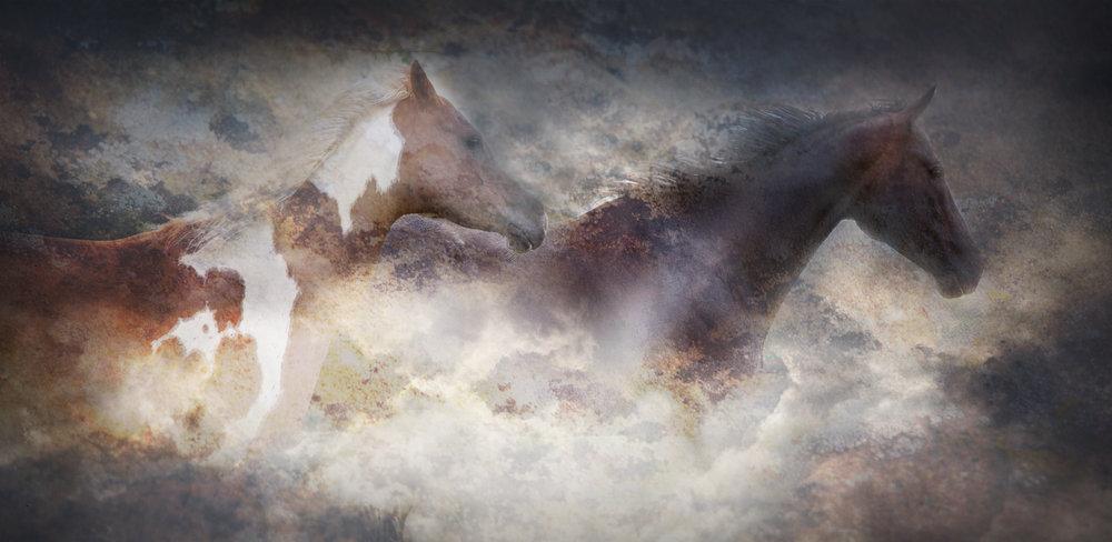 Divine Equus