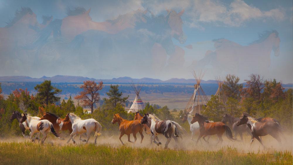 Indian Pony Run