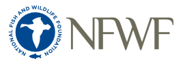 NFWF Logo.PNG