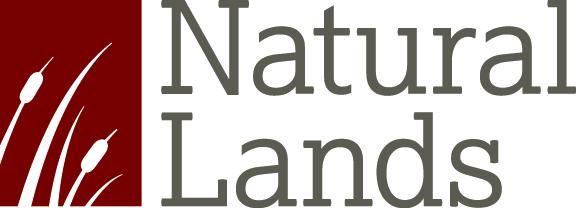 NL logo.jpg