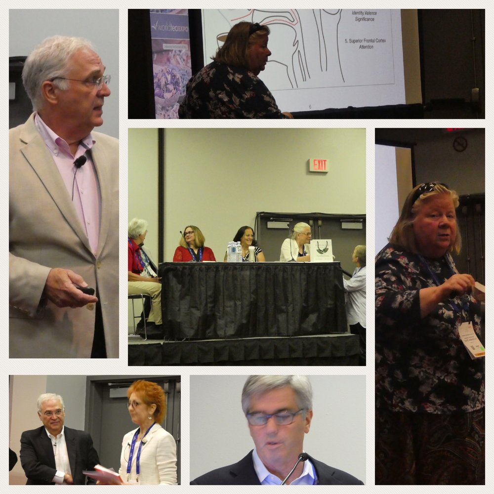 WTE attendees had a wide array of topics and speakers from which to choose.