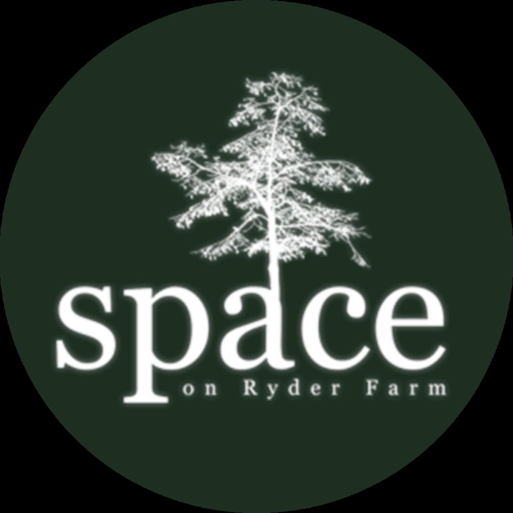 SPACE_Logo_version2.png
