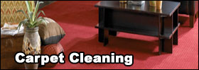 carpet cleaning and true truck mounted steam cleaning