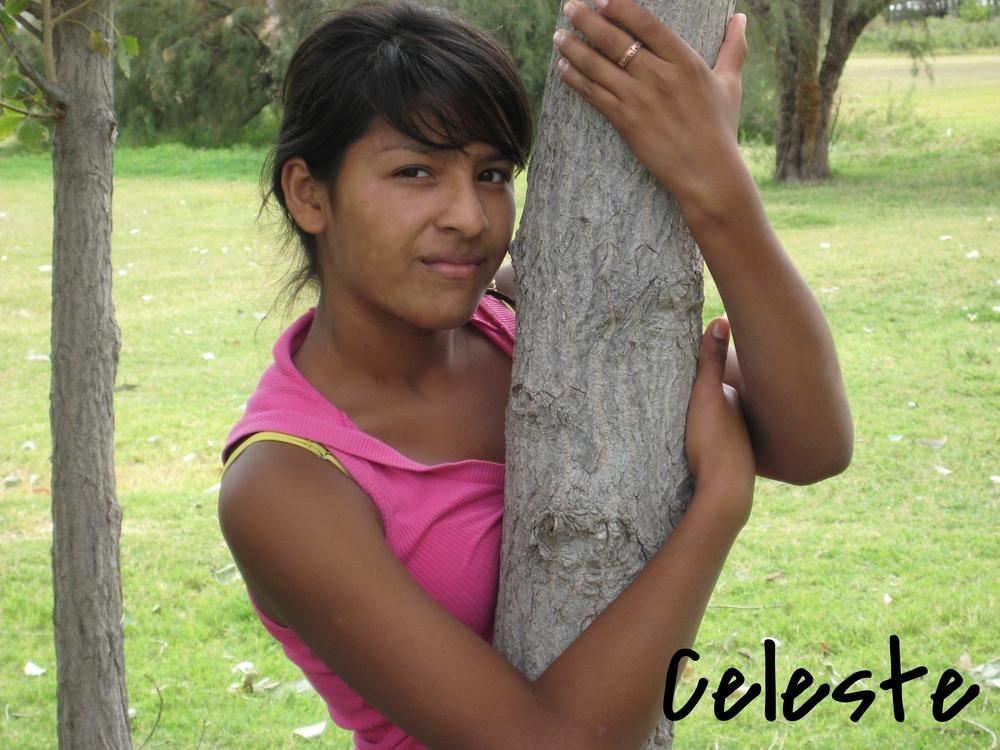 celeste_13887659610_o.jpg