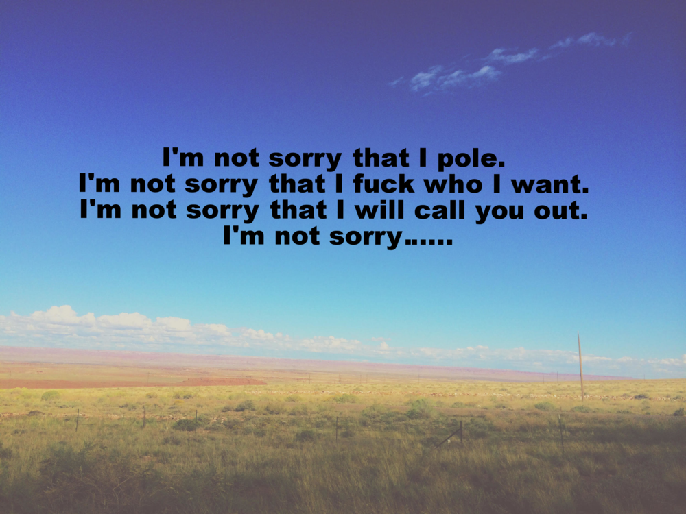 "Shannon January 12 2016 Image of a field of yellow grass with blue sky. ""I'm not sorry that I pole. I'm not sorry that I fuck who I want. I'm not sorry that I will call you out. I'm not sorry..."" is overlaid."
