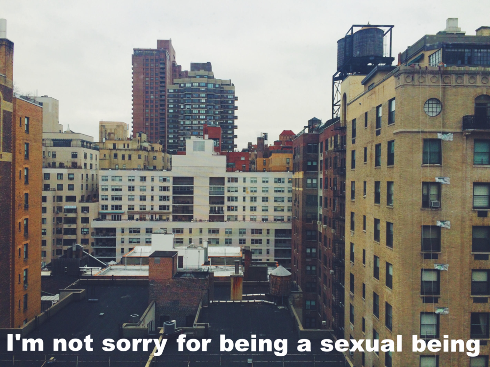 "Sergio December 22 2015 Image of several city buildings as seen from many stories up. ""I'm not sorry for being a sexual being"" is overlaid."