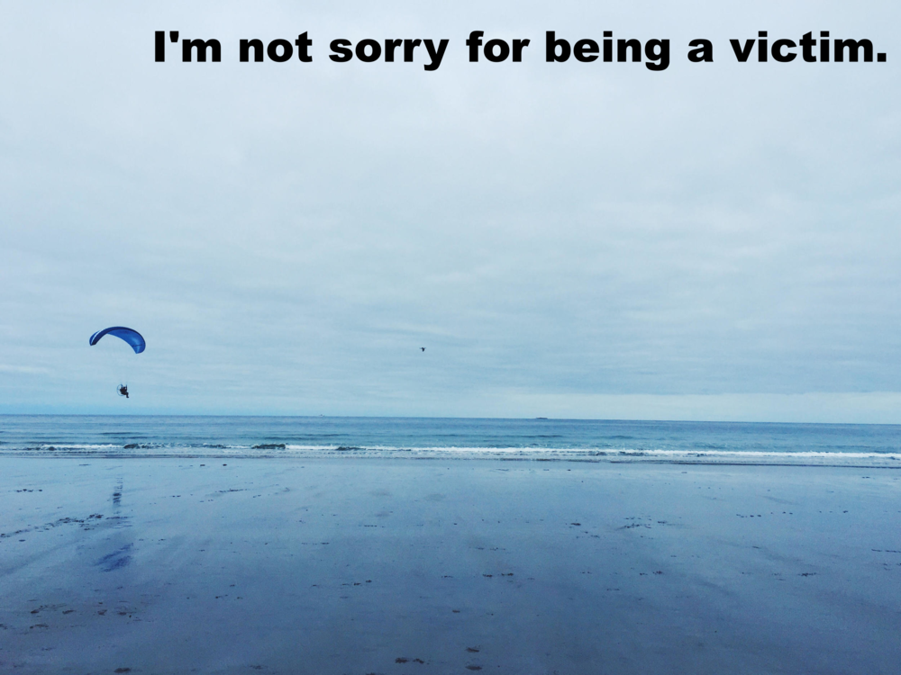 "Afton January 10 2016 Image of the shoreline of a beach with person in a motorized hang glider floating above the water. ""I'm not sorry for being a victim"" is overlaid."