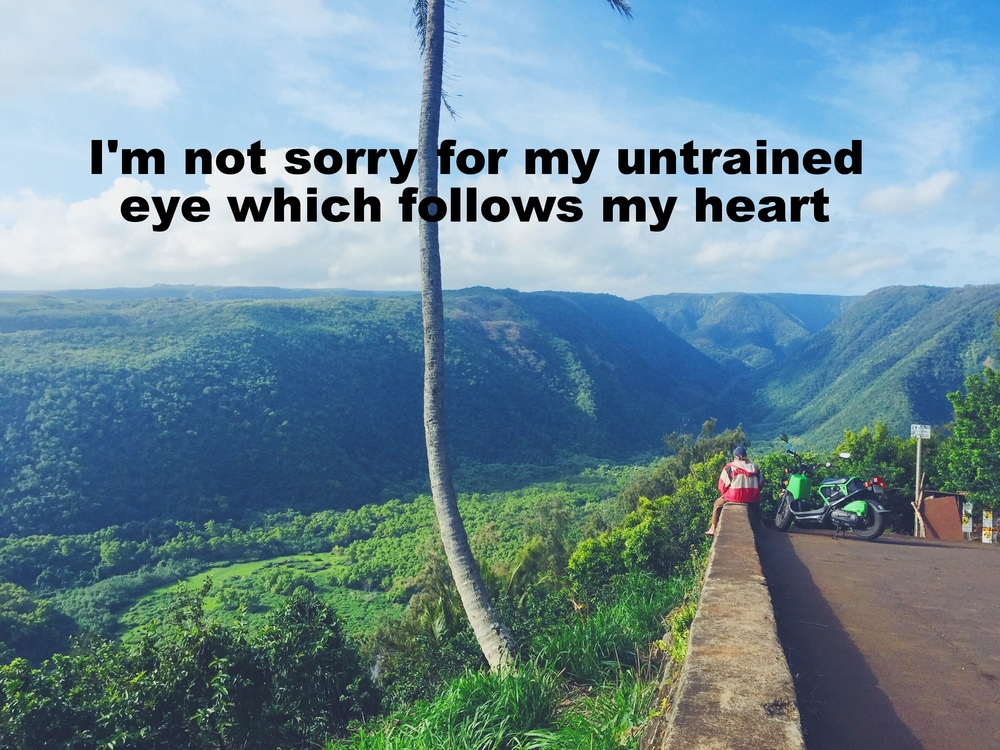 "Anonymous January 2016 Image of a vast tropical canyon. A man sits on a wall in the foreground. ""I'm not sorry for my untrained eye that follows my heart"" is overlaid."
