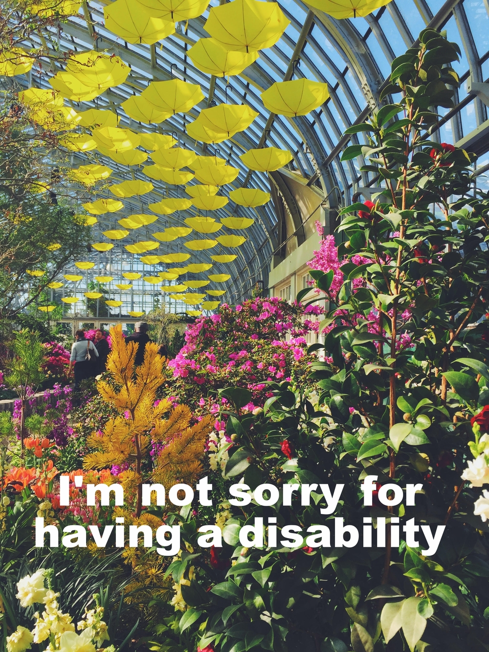 "Justin January 14 2016 Image of a plant conservatory, where colorful plants (orange, yellow, pink, green) fill the image. Glass windows arch above, with yellow umbrellas artistically hanging from the glass ceiling. ""I'm not sorry for having a disability"" is overlaid."