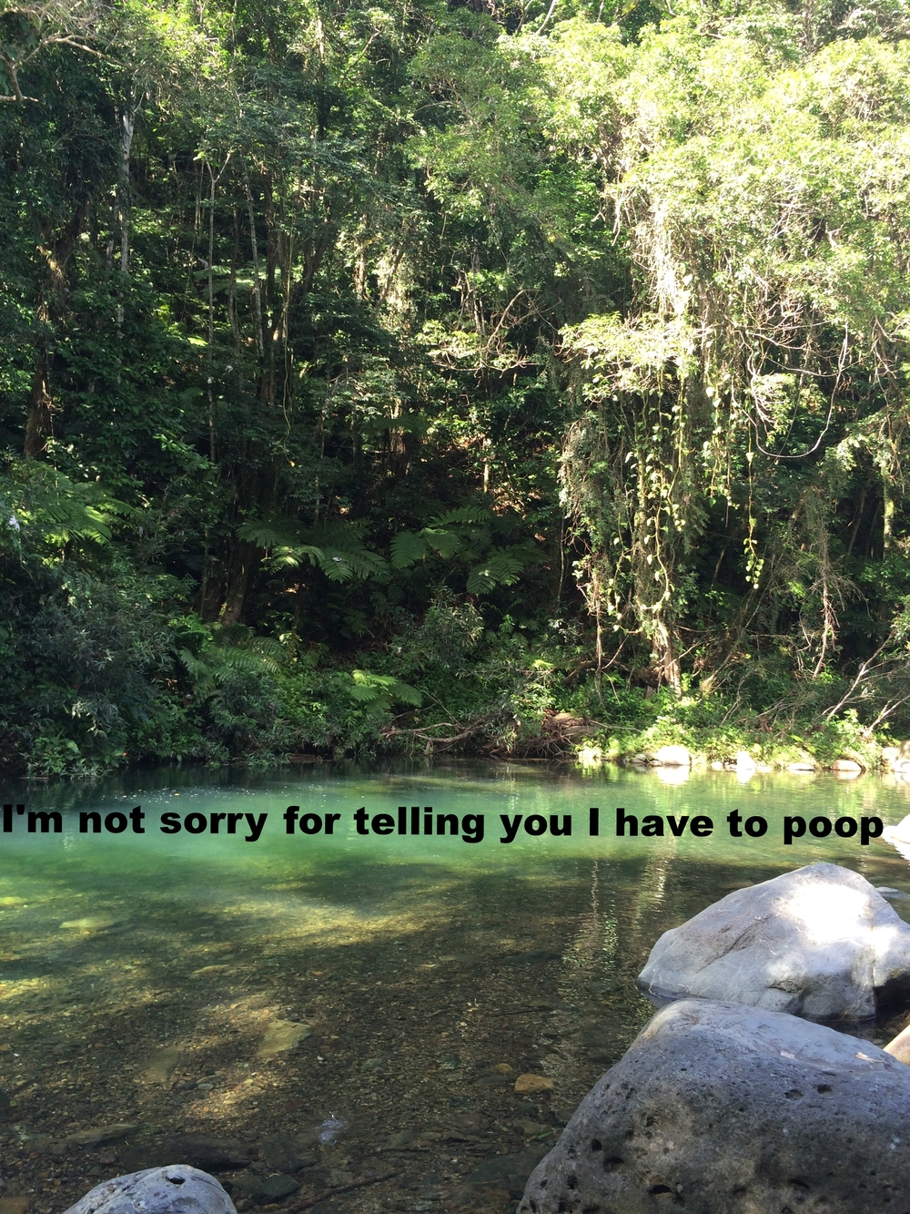 "Maya January 25 2016 Lush green trees surround a clear green blue shallow creek. ""I'm not sorry for telling you I have to poop"" is overlaid."