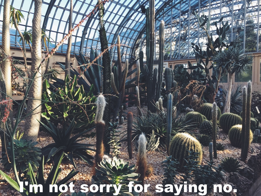 "Claire February 2 2016 Image of cacti and succulents under a large glass dome. ""I'm not sorry for saying no"" is overlaid."