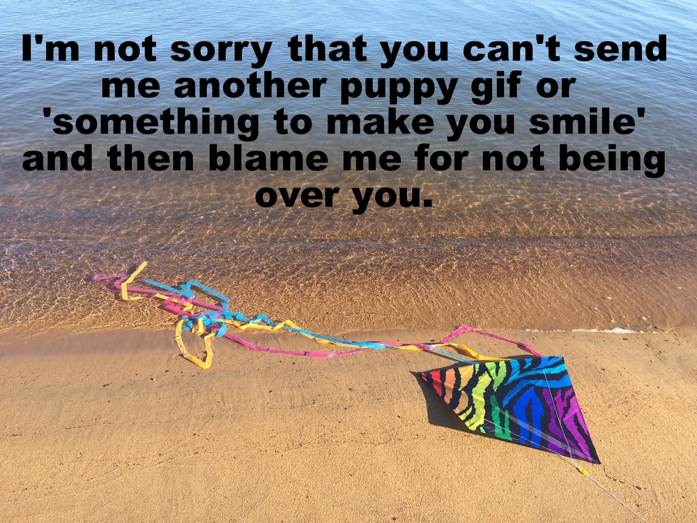 "Anonymous February 11 2016. Image of a rainbow colored kite with blue, yellow, and pink streamers trailing from it, lying on the sand at the end of the water. ""I'm not sorry you can't send me another puppy gif or something 'to make you smile' and then blame me for not being over you"" is overlaid."