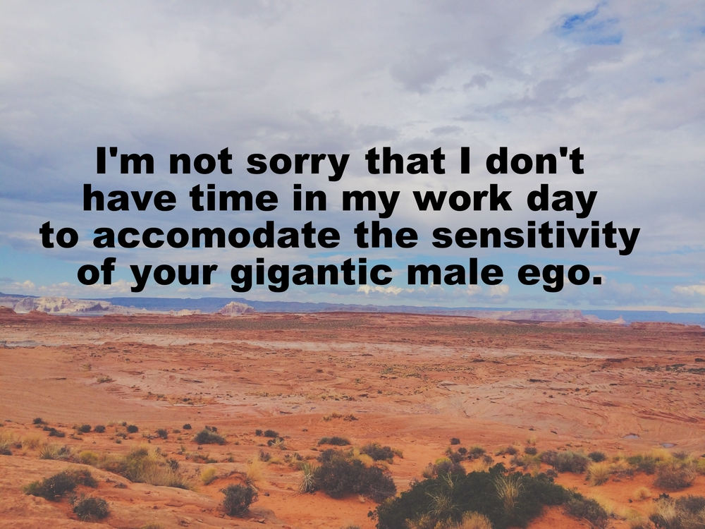 "Anonymous February 12 2016 Image of bright orange sand and desert rock formations. In the distance, along the horizon, we can see lighter colored rocks and a hint of water. Fluffy white and gray clouds hang in the sky. ""I'm not sorry that I don't have time in my workday to accommodate the sensitivity of your gigantic male ego"" is overlaid."