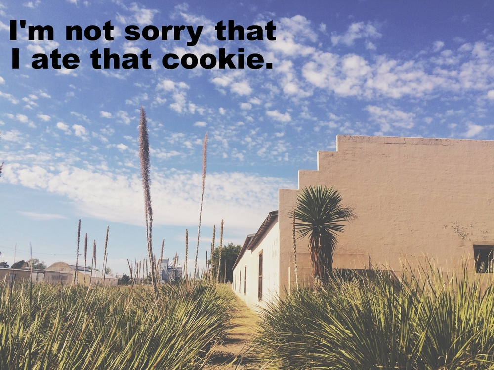 "Petry February 20 2016 Image of a low stucco building against a bright blue sky. In the foreground are spiky green plants and one large yucca plant. ""I'm not sorry that I ate that cookie"" is overlaid."