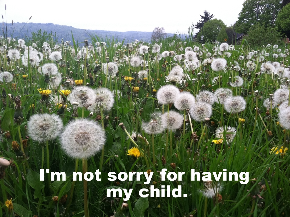 "Anonymous February 20 2016 Image of a field of green grass filled with puffy white dandelions. ""I'm not sorry for having my child"" is overlaid."