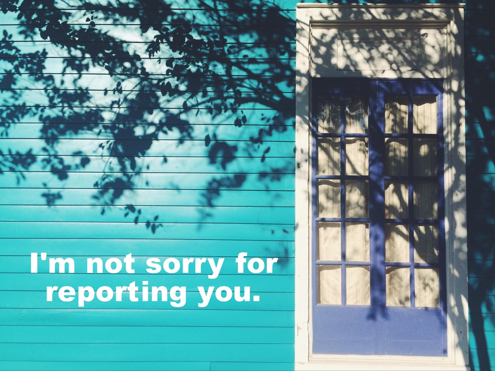 "Anonymous February 18 2016 Image of the side of a bright blue house. To the right is a darker blue door with white curtains hanging in it. The shadow of a tree falls across the frame. ""I'm not sorry for reporting you"" is overlaid."