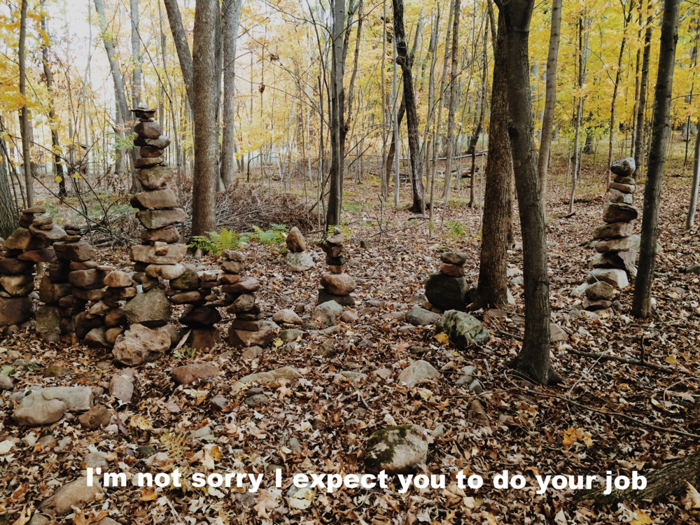 "Anonymous February 18 2016 Image of different sizes of stones balanced on top of one another among mostly-bare trees in the woods. Some green ferns and yellow leaves stand out among shades of brown and leaves on the forest floor.  ""I'm not sorry I expect you to do your job"" is overlaid."