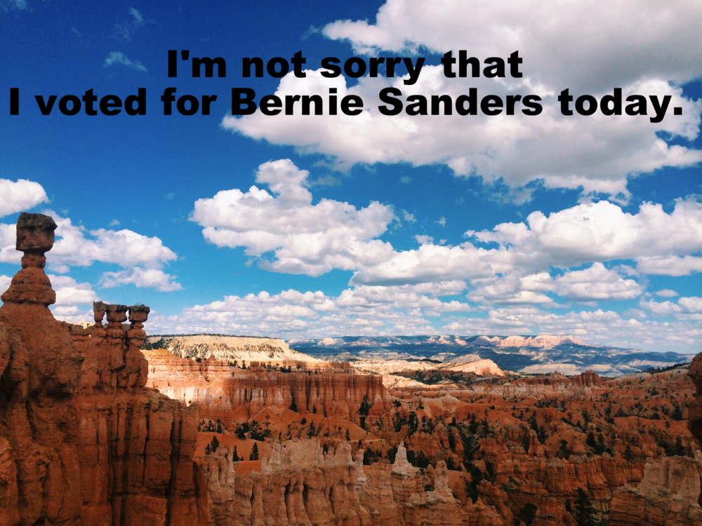"Bridget March 1 2016 Image of a vast orange canyon filled with jutting rock formations. The sky is bright blue and filled with fluffy clouds. In the distance the sun dapples a green and orange mountain range. ""I'm not sorry that I voted for Bernie Sanders today"" is overlaid."