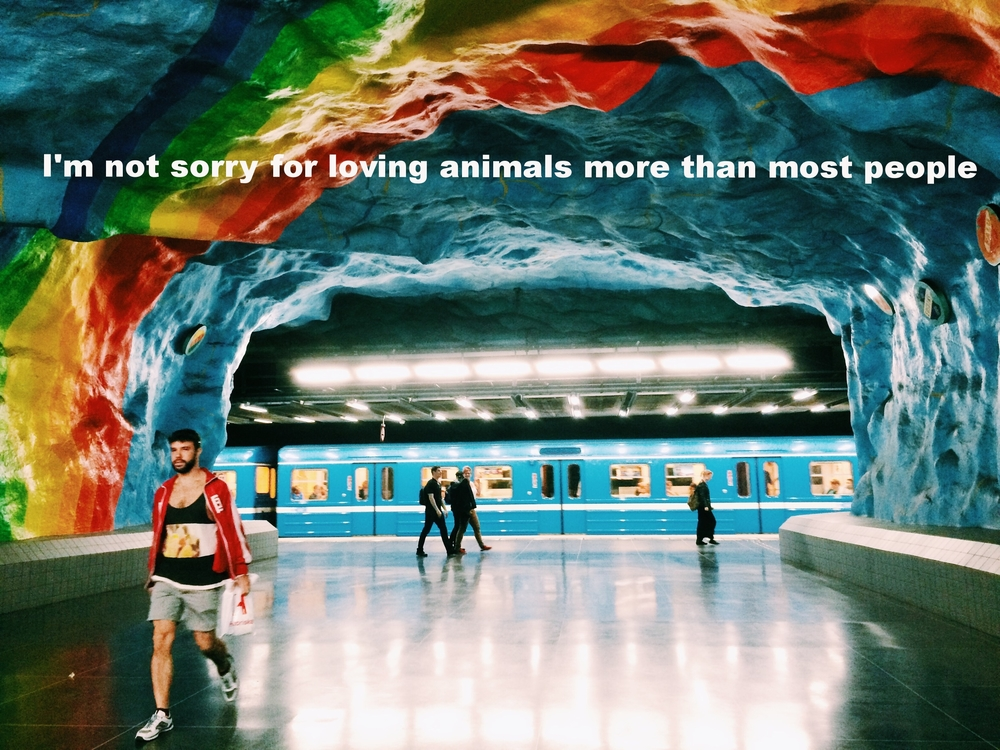"Charlee March 2 2016 Painted rock walls frame a subway station like a cave arch. A blue train pulls into the station under a painted rainbow arch. People walk through the station.  ""I'm not sorry for loving animals more than most people"" is overlaid."