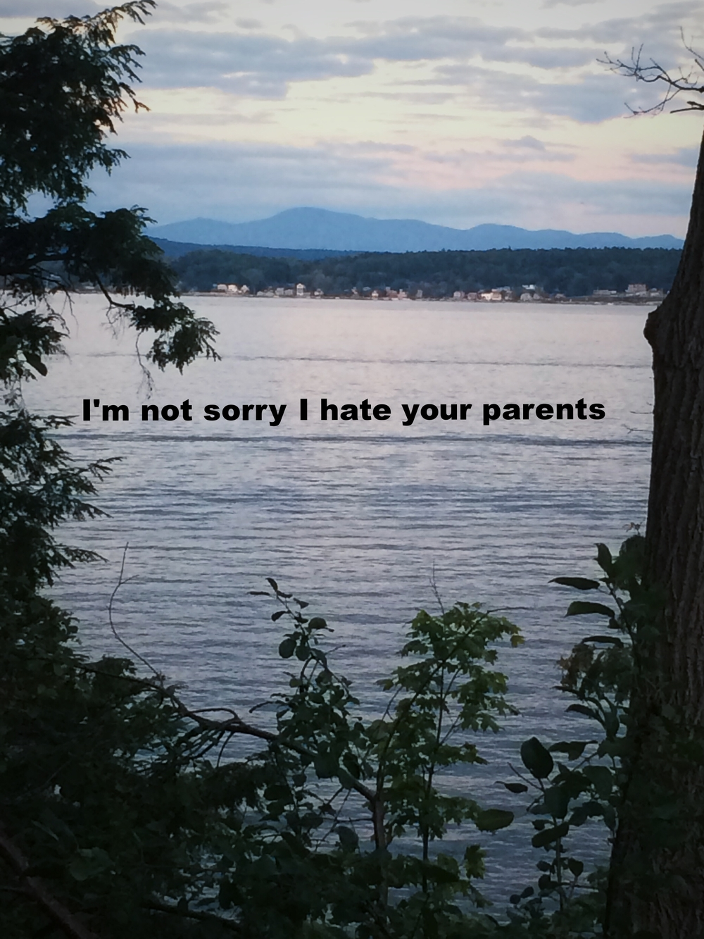"Anonymous March 2 2016 Image of a dark blue lake at twilight, framed by the leaves of trees. There are mountains and blue-violet clouds in the distance. ""I'm not sorry I hate your parents"" is overlaid."
