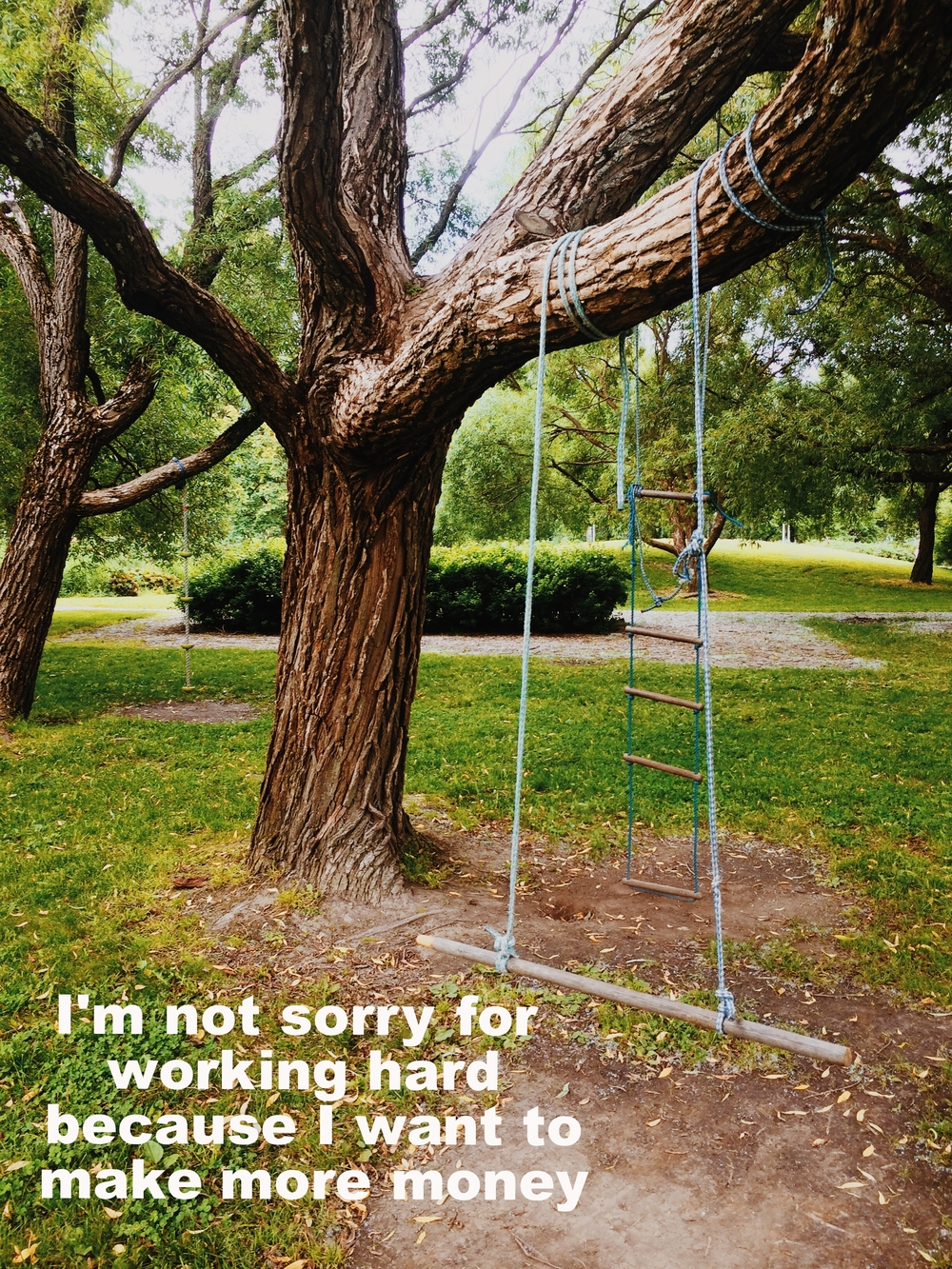 "Stephan March 3 2016 Image of a green park with several large trees. On one tree is a makeshift swing (two ropes tied to a branch with a log in between as a seat) and a hanging ladder. ""I'm not sorry for working hard because I want to make more money"" is overlaid."