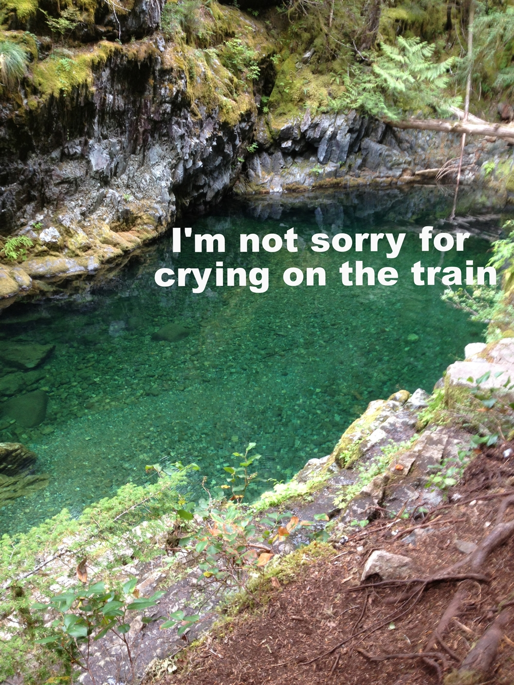 "Anonymous March 4 2016 Image of a clear blue-green lake with a rocky cliff-face and overhanging tree branches and moss. ""I'm not sorry for crying on the train."""