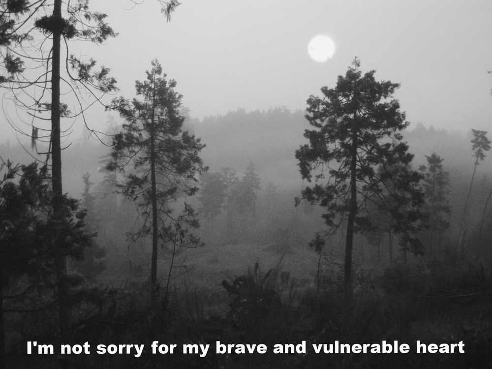 "Erin March 6 2016 Image of evergreen trees and plants in a mountainous landscape in the fog. The sun shines through the fog overhead, and the entire landscape looks grey. ""I'm not sorry for my brave and vulnerable heart"" is overlaid."