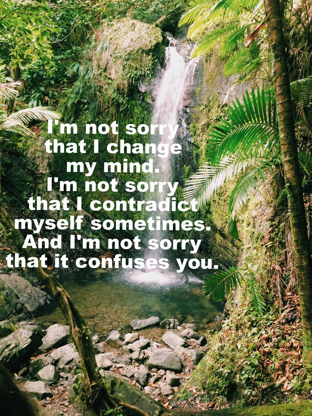"Anonymous March 29 2016 Image of a waterfall with lush trees, moss, and plants of many shades of green surrounding it. Water falls into a rocky pool at the bottom. ""I'm not sorry that I change my mind. I'm not sorry that I contradict myself sometimes. And I'm not sorry that it confuses you"" is overlaid."